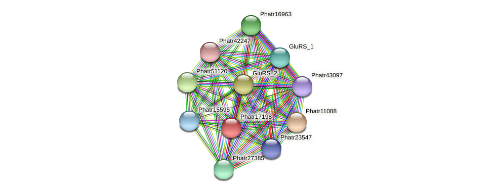 Phatr17198 protein (Phaeodactylum tricornutum) - STRING interaction network
