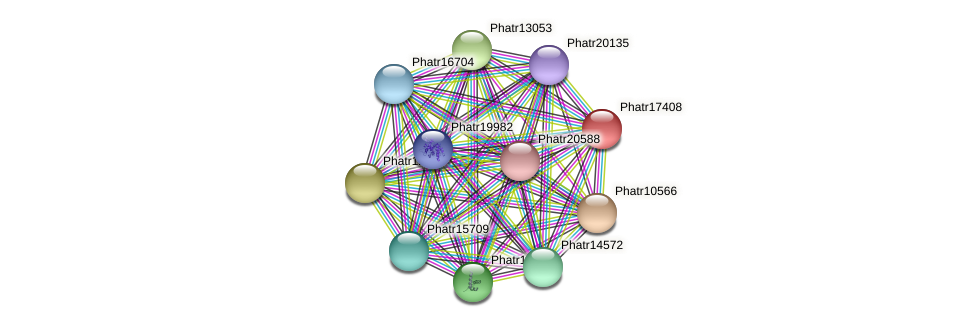 Phatr17408 protein (Phaeodactylum tricornutum) - STRING interaction network
