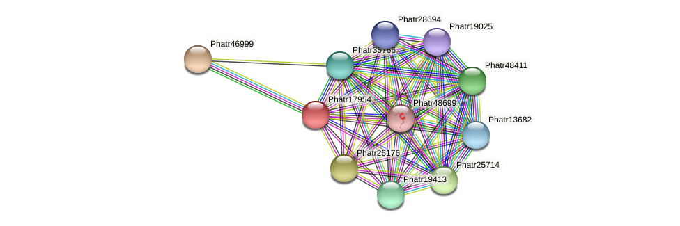 Phatr17954 protein (Phaeodactylum tricornutum) - STRING interaction network
