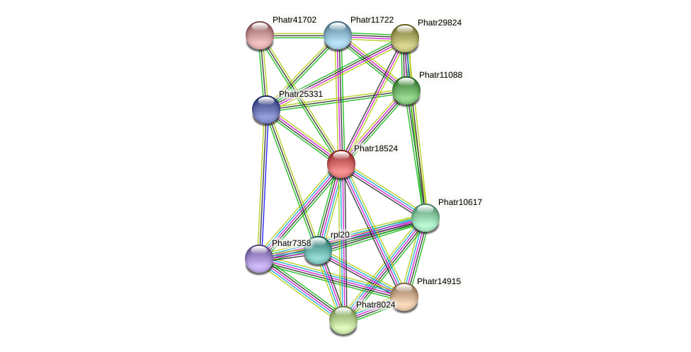 Phatr18524 protein (Phaeodactylum tricornutum) - STRING interaction network