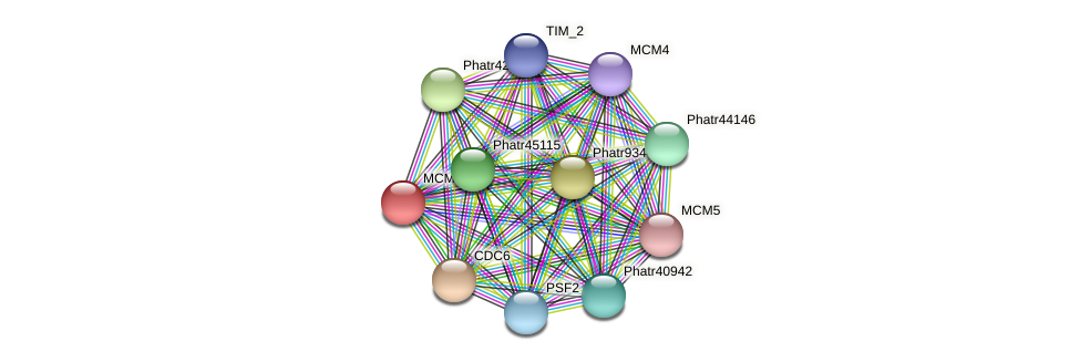 MCM2 protein (Phaeodactylum tricornutum) - STRING interaction network