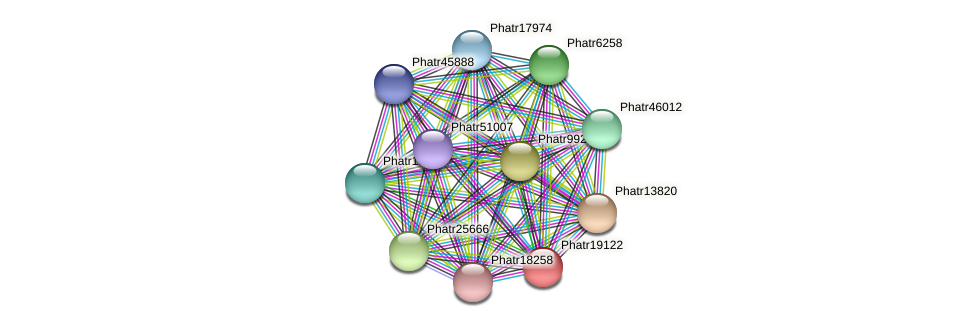 Phatr19122 protein (Phaeodactylum tricornutum) - STRING interaction network