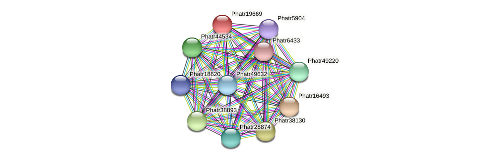 Phatr19669 protein (Phaeodactylum tricornutum) - STRING interaction network