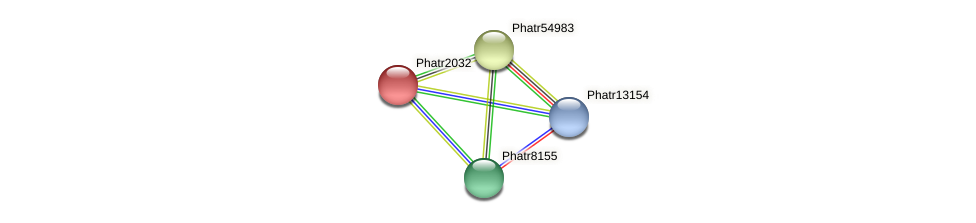 Phatr2032 protein (Phaeodactylum tricornutum) - STRING interaction network