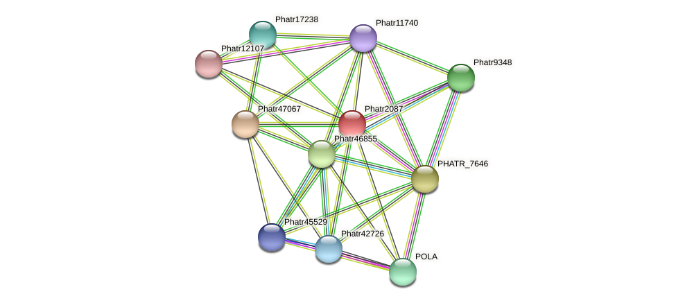 Phatr2087 protein (Phaeodactylum tricornutum) - STRING interaction network
