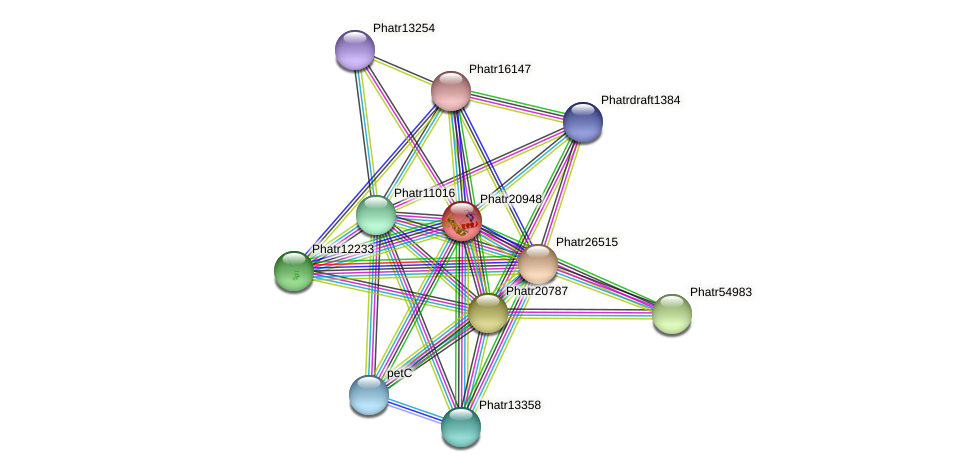 Phatr20948 protein (Phaeodactylum tricornutum) - STRING interaction network