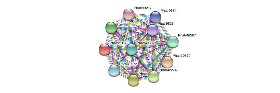 Phatr21198 protein (Phaeodactylum tricornutum) - STRING interaction network