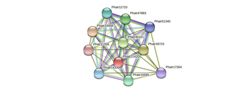 Phatr21420 protein (Phaeodactylum tricornutum) - STRING interaction network