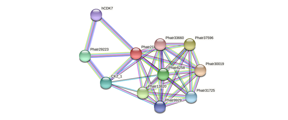 Phatr21821 protein (Phaeodactylum tricornutum) - STRING interaction network