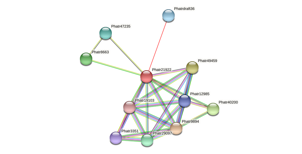 Phatr21922 protein (Phaeodactylum tricornutum) - STRING interaction network