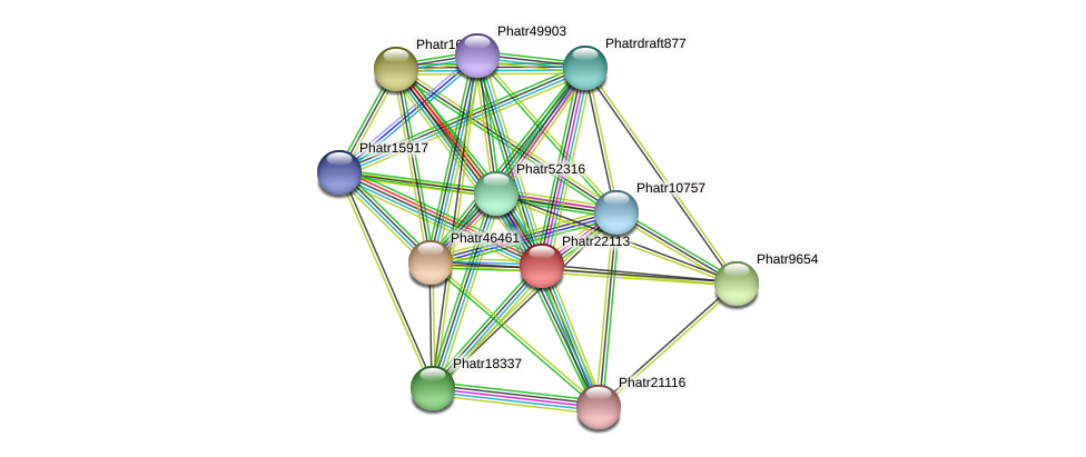 Phatr22113 protein (Phaeodactylum tricornutum) - STRING interaction network