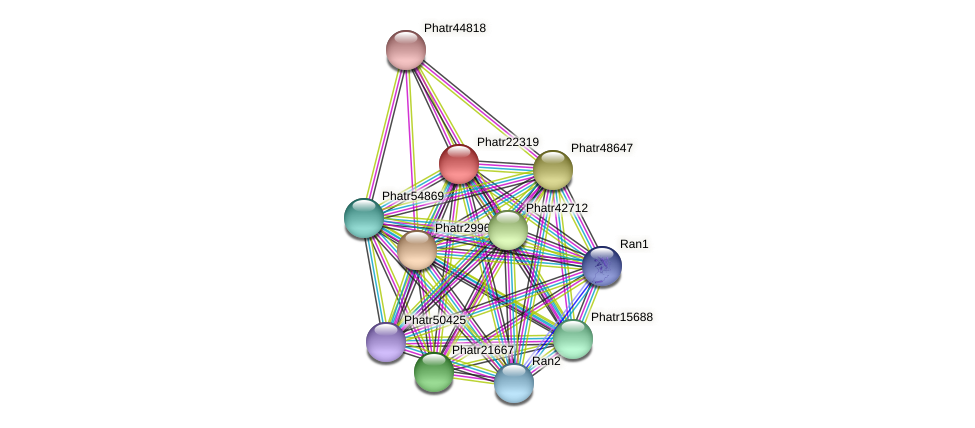 Phatr22319 protein (Phaeodactylum tricornutum) - STRING interaction network