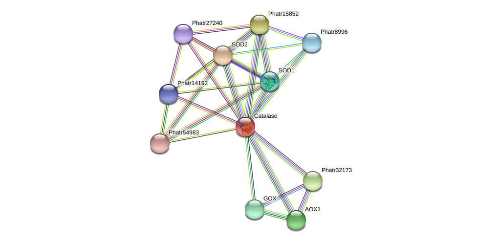 Phatr22418 protein (Phaeodactylum tricornutum) - STRING interaction network