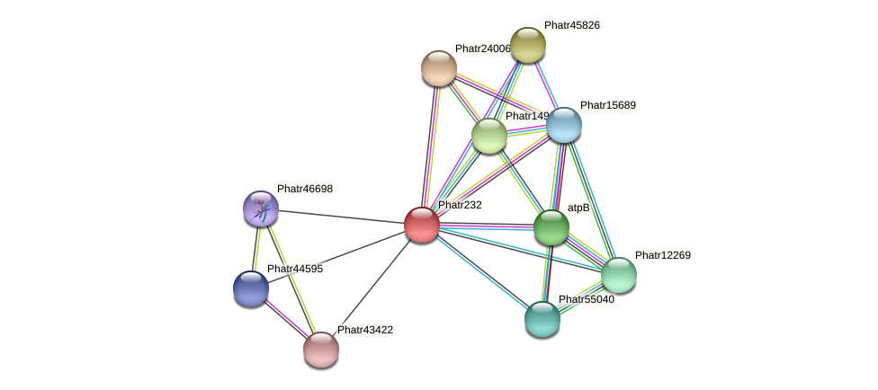 Phatr232 protein (Phaeodactylum tricornutum) - STRING interaction network