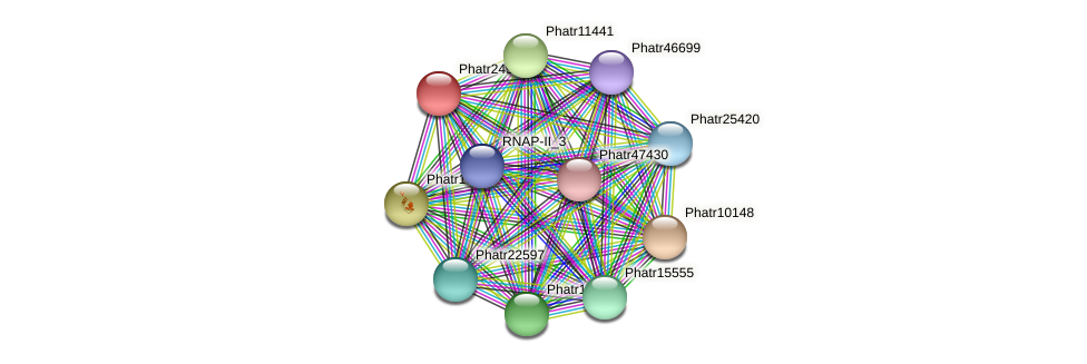Phatr24922 protein (Phaeodactylum tricornutum) - STRING interaction network