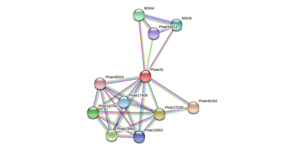 Phatr25 protein (Phaeodactylum tricornutum) - STRING interaction network