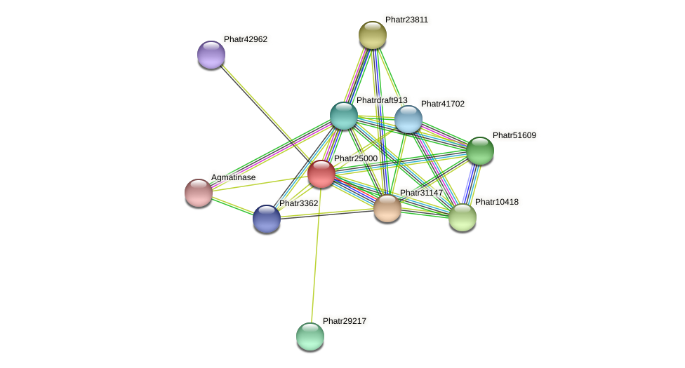 Phatr25000 protein (Phaeodactylum tricornutum) - STRING interaction network