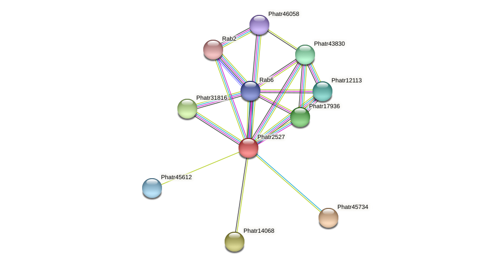 Phatr2527 protein (Phaeodactylum tricornutum) - STRING interaction network