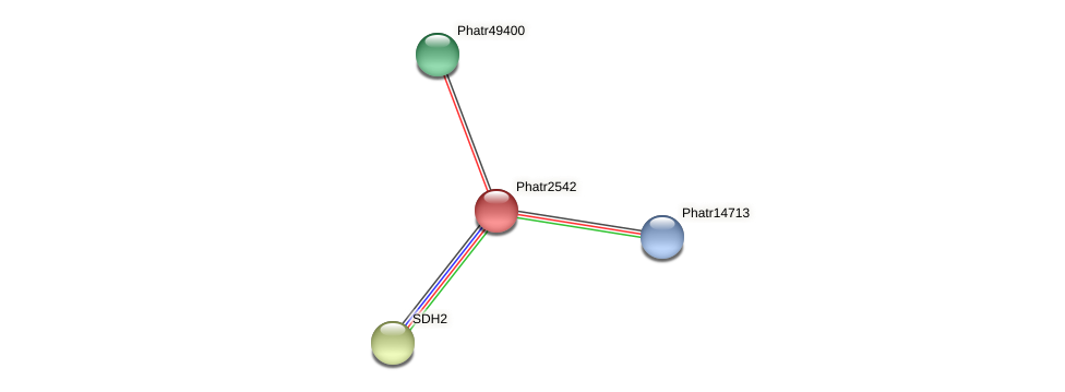 Phatr2542 protein (Phaeodactylum tricornutum) - STRING interaction network