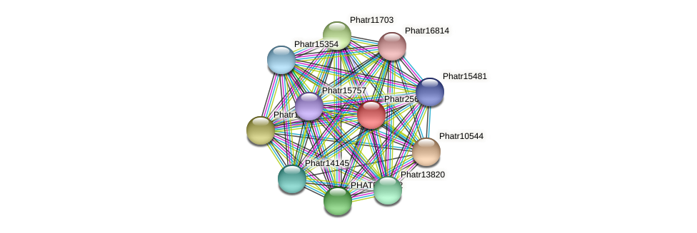 Phatr25666 protein (Phaeodactylum tricornutum) - STRING interaction network