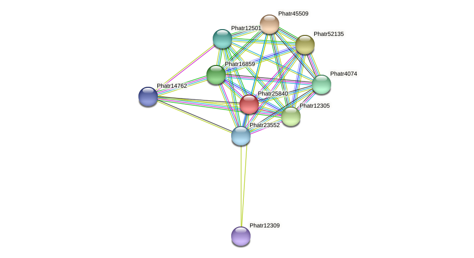 Phatr25840 protein (Phaeodactylum tricornutum) - STRING interaction network
