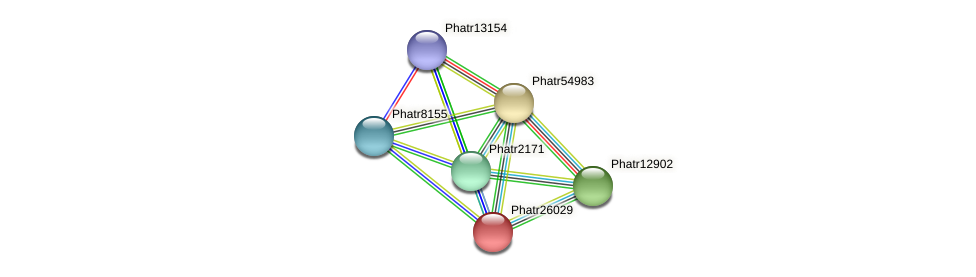 Phatr26029 protein (Phaeodactylum tricornutum) - STRING interaction network