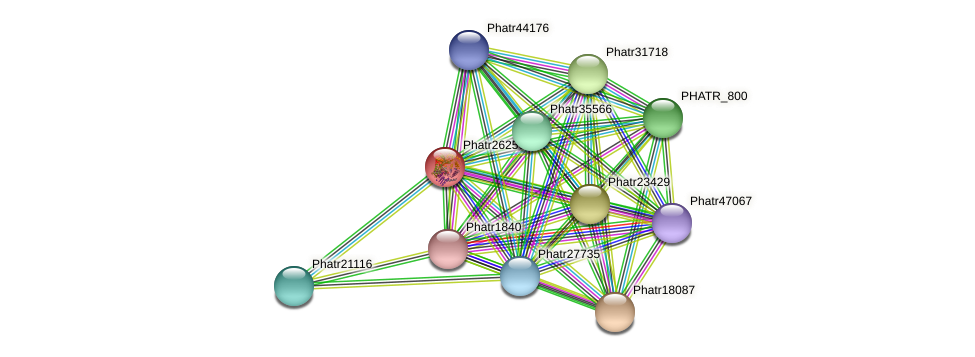 Phatr26256 protein (Phaeodactylum tricornutum) - STRING interaction network