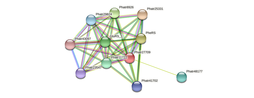 Phatr27709 protein (Phaeodactylum tricornutum) - STRING interaction network