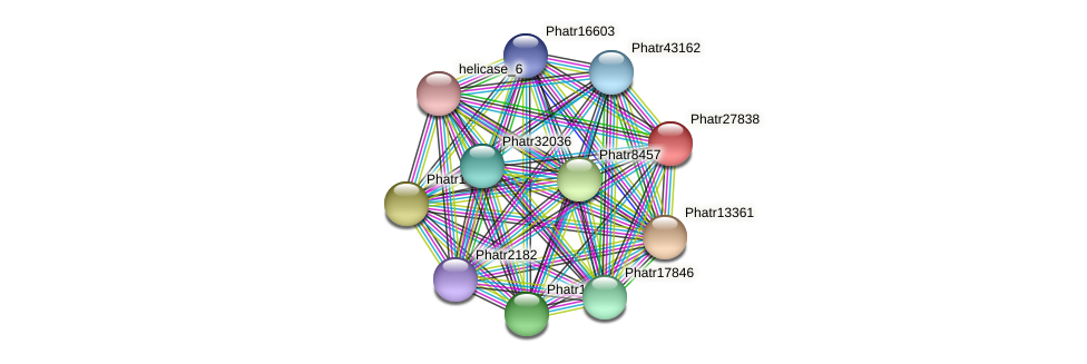 Phatr27838 protein (Phaeodactylum tricornutum) - STRING interaction network