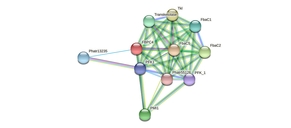 FBPC4 protein (Phaeodactylum tricornutum) - STRING interaction network