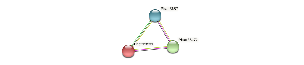 Phatr28331 protein (Phaeodactylum tricornutum) - STRING interaction network