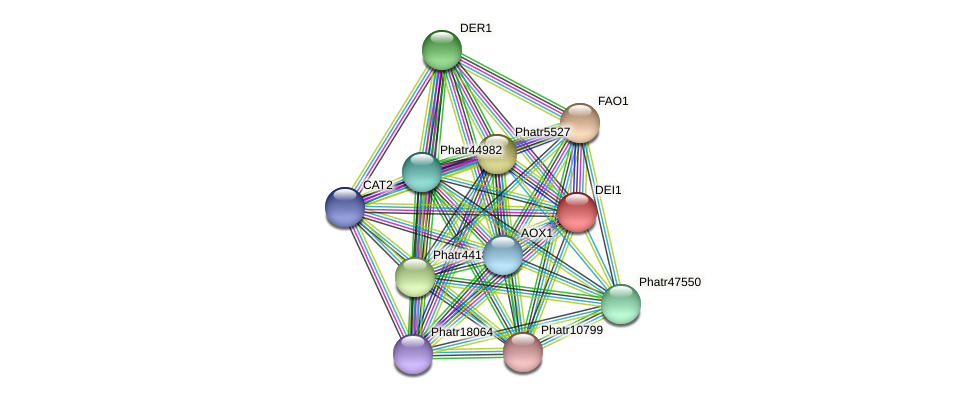 DEI1 protein (Phaeodactylum tricornutum) - STRING interaction network