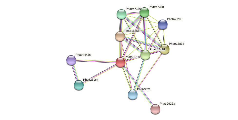 Phatr28730 protein (Phaeodactylum tricornutum) - STRING interaction network