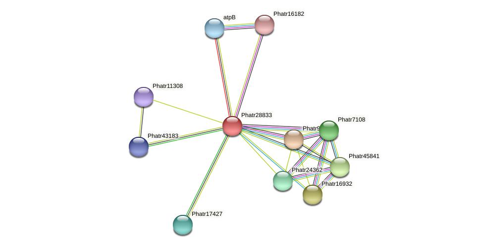 Phatr28833 protein (Phaeodactylum tricornutum) - STRING interaction network