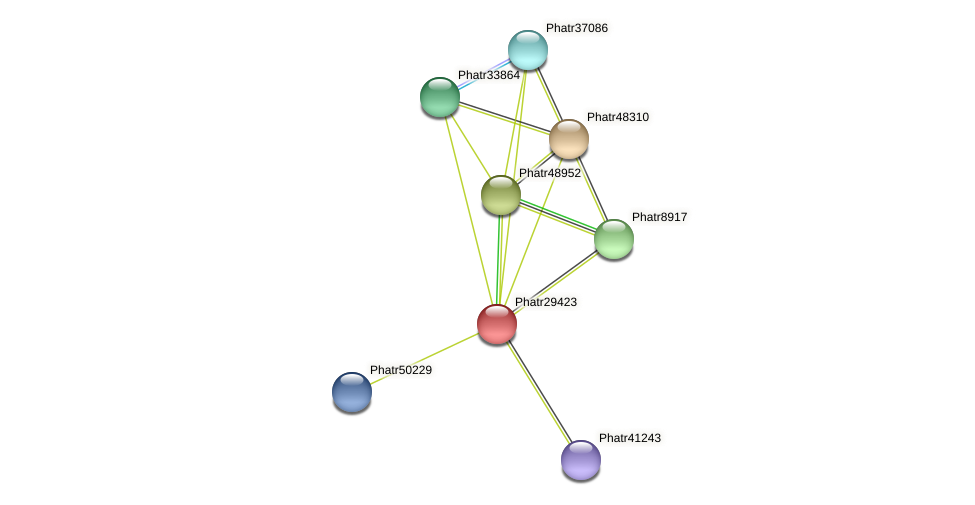 Phatr29423 protein (Phaeodactylum tricornutum) - STRING interaction network