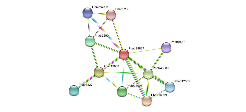 Phatr29887 protein (Phaeodactylum tricornutum) - STRING interaction network