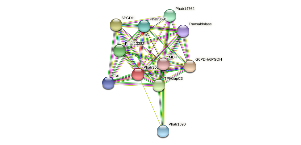 Phatr30040 protein (Phaeodactylum tricornutum) - STRING interaction network
