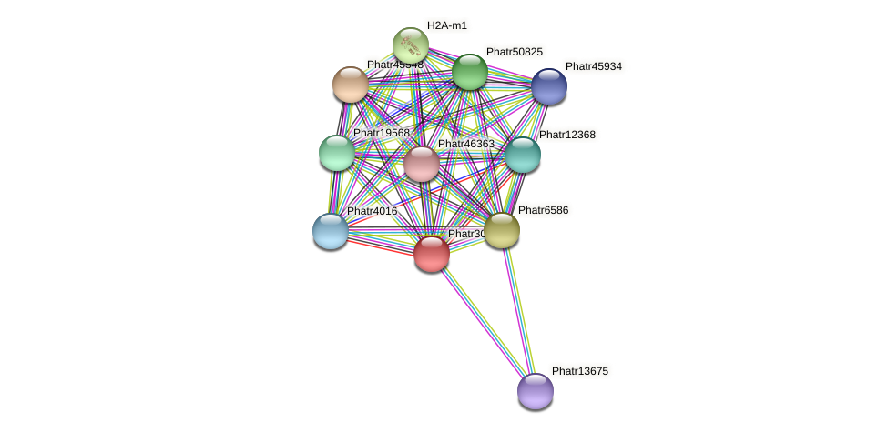 Phatr30140 protein (Phaeodactylum tricornutum) - STRING interaction network