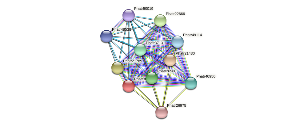 Phatr30446 protein (Phaeodactylum tricornutum) - STRING interaction network