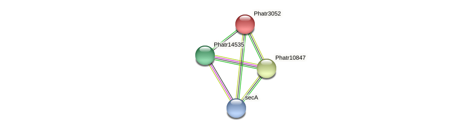Phatr3052 protein (Phaeodactylum tricornutum) - STRING interaction network