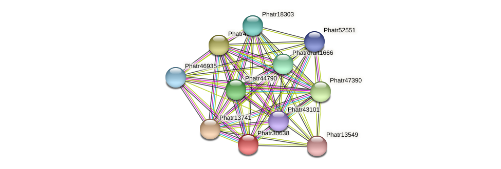 Phatr30638 protein (Phaeodactylum tricornutum) - STRING interaction network