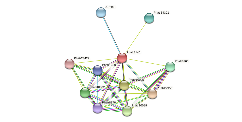 Phatr3145 protein (Phaeodactylum tricornutum) - STRING interaction network