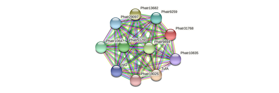 Phatr31768 protein (Phaeodactylum tricornutum) - STRING interaction network