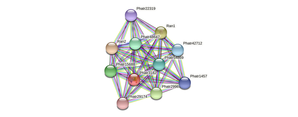 Phatr3182 protein (Phaeodactylum tricornutum) - STRING interaction network