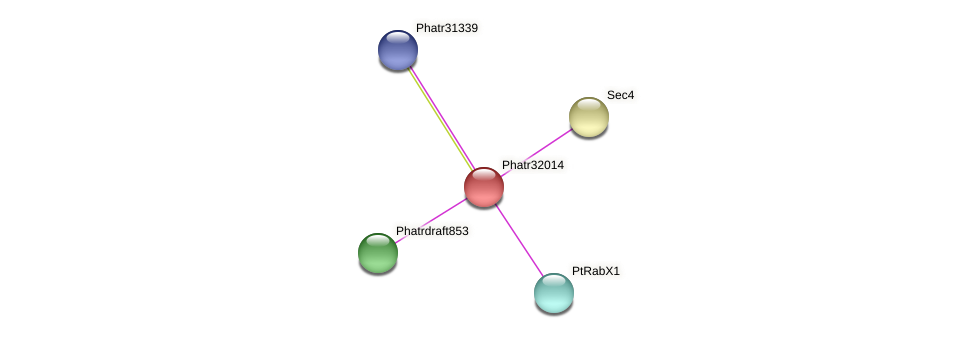 Phatr32014 protein (Phaeodactylum tricornutum) - STRING interaction network