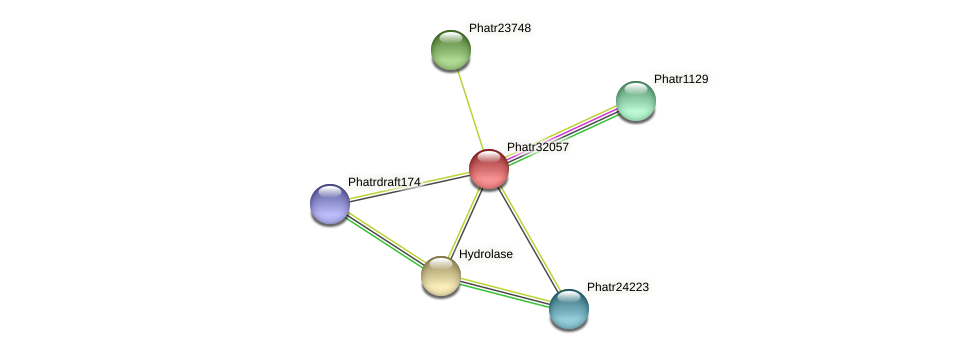 Phatr32057 protein (Phaeodactylum tricornutum) - STRING interaction network