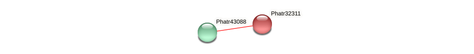Phatr32311 protein (Phaeodactylum tricornutum) - STRING interaction network
