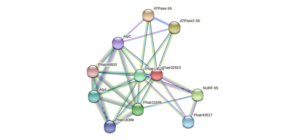 Phatr32923 protein (Phaeodactylum tricornutum) - STRING interaction network