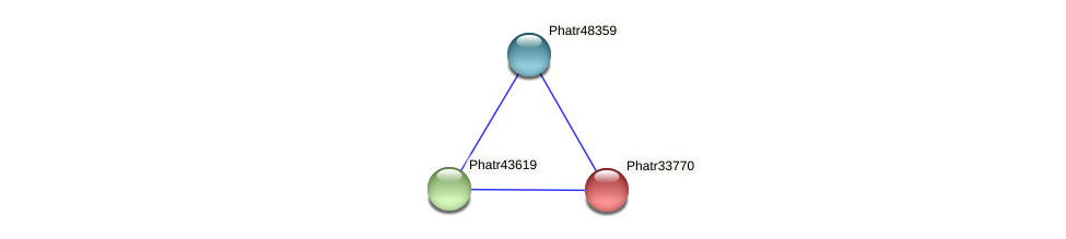Phatr33770 protein (Phaeodactylum tricornutum) - STRING interaction network