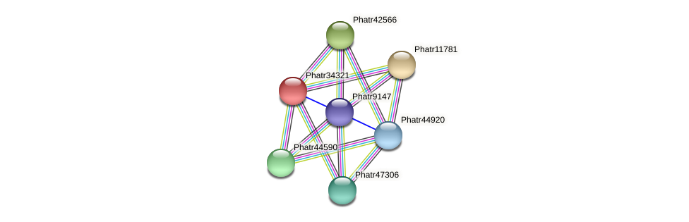 Phatr34321 protein (Phaeodactylum tricornutum) - STRING interaction network
